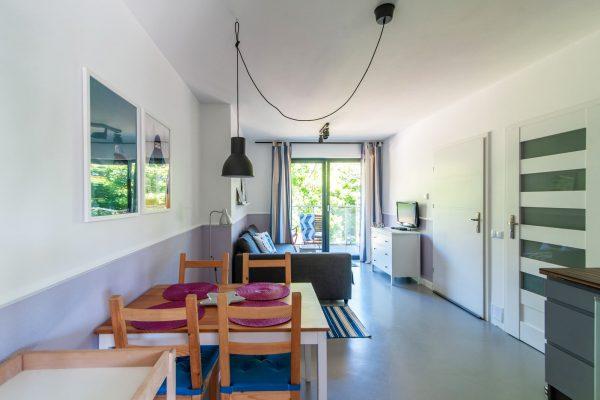Salon w apartamencie z kuchnią i balkonem